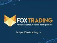 Dịch vụ thương mại Fox Trading – Nền tảng Fox Trading? Giới thiệu tổng quan về Fox Trading token